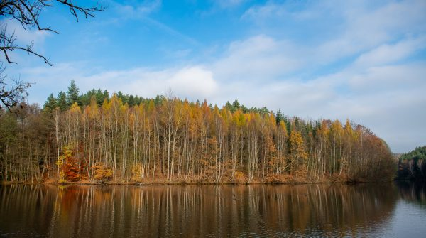 Autumn lake, Czech Republic